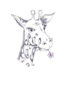 010 giraffe