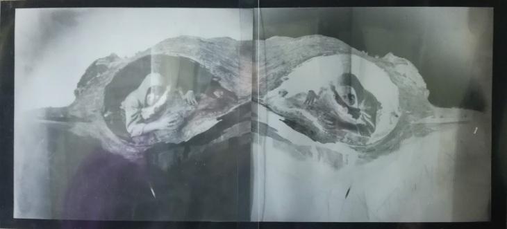 Sylwia Mucha pinhole selfportrait
